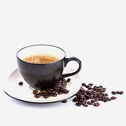 gourmet cafe v2